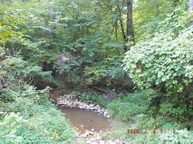 23 Grey Fox Run, Timberlake, NC 27583 (#2235847) :: Morgan Womble Group