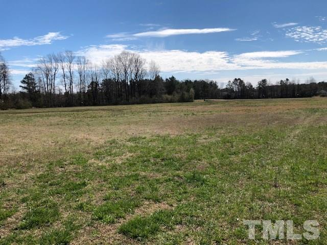 1225 Bethlehem Road, Rocky Mount, NC 27803 (#2241439) :: The Perry Group