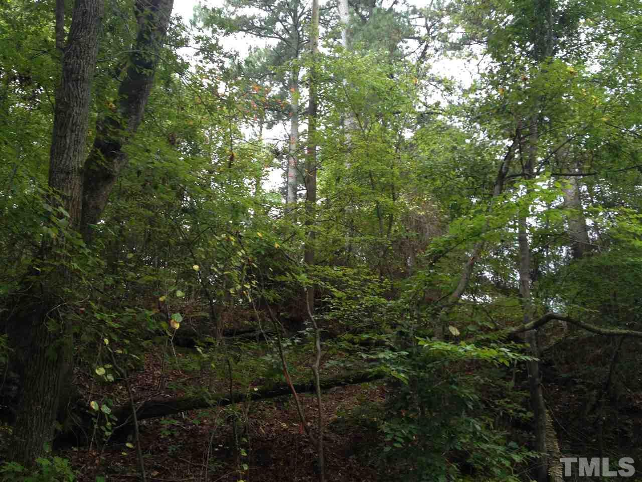6 Old Stage Road - Photo 1