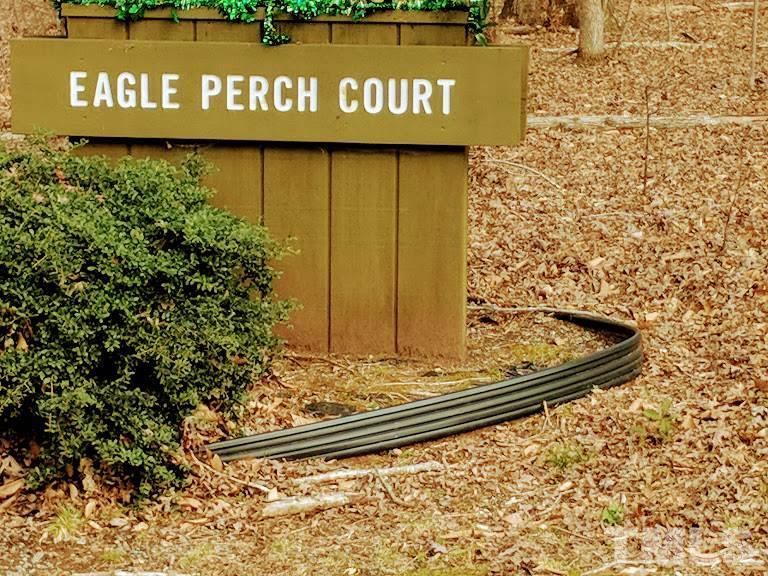 Eagle Perch Court - Photo 1