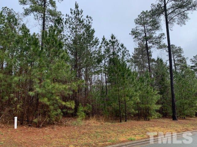 223 High Ridge Lane, Pittsboro, NC 27312 (#2243681) :: M&J Realty Group
