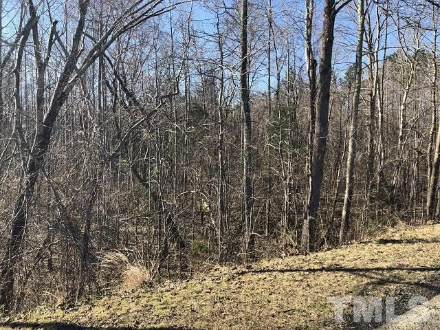 Lot 16 Dalton Mill Road, Bullock, NC 27507 (#2244421) :: Morgan Womble Group
