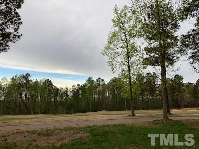 318 High Ridge Drive, Pittsboro, NC 27312 (#2247530) :: The Jim Allen Group