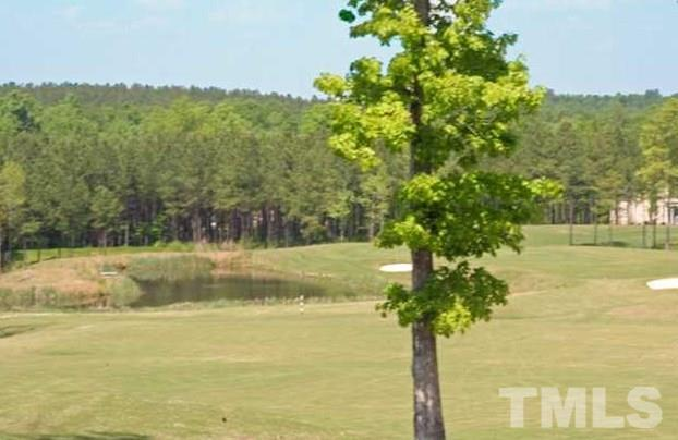 800 Golfers View, Pittsboro, NC 27312 (#2247535) :: Raleigh Cary Realty