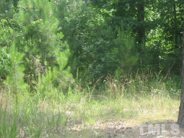 188 High Ridge Lane, Pittsboro, NC 27312 (#2250348) :: The Beth Hines Team