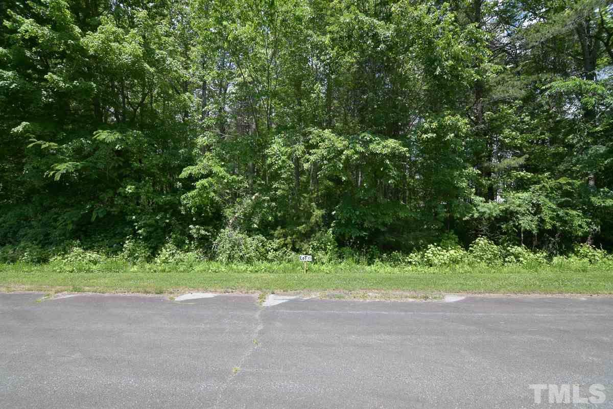 Lot 39 Beaver Valley Drive - Photo 1
