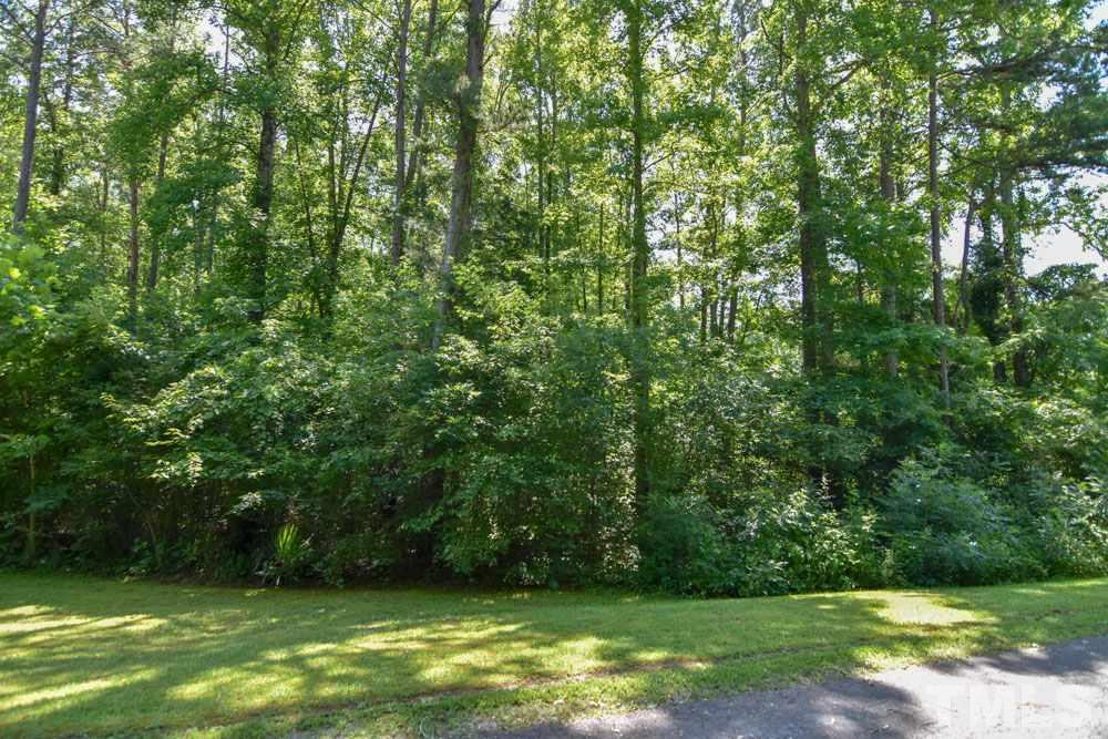 1 acre Loftis Loop Road - Photo 1