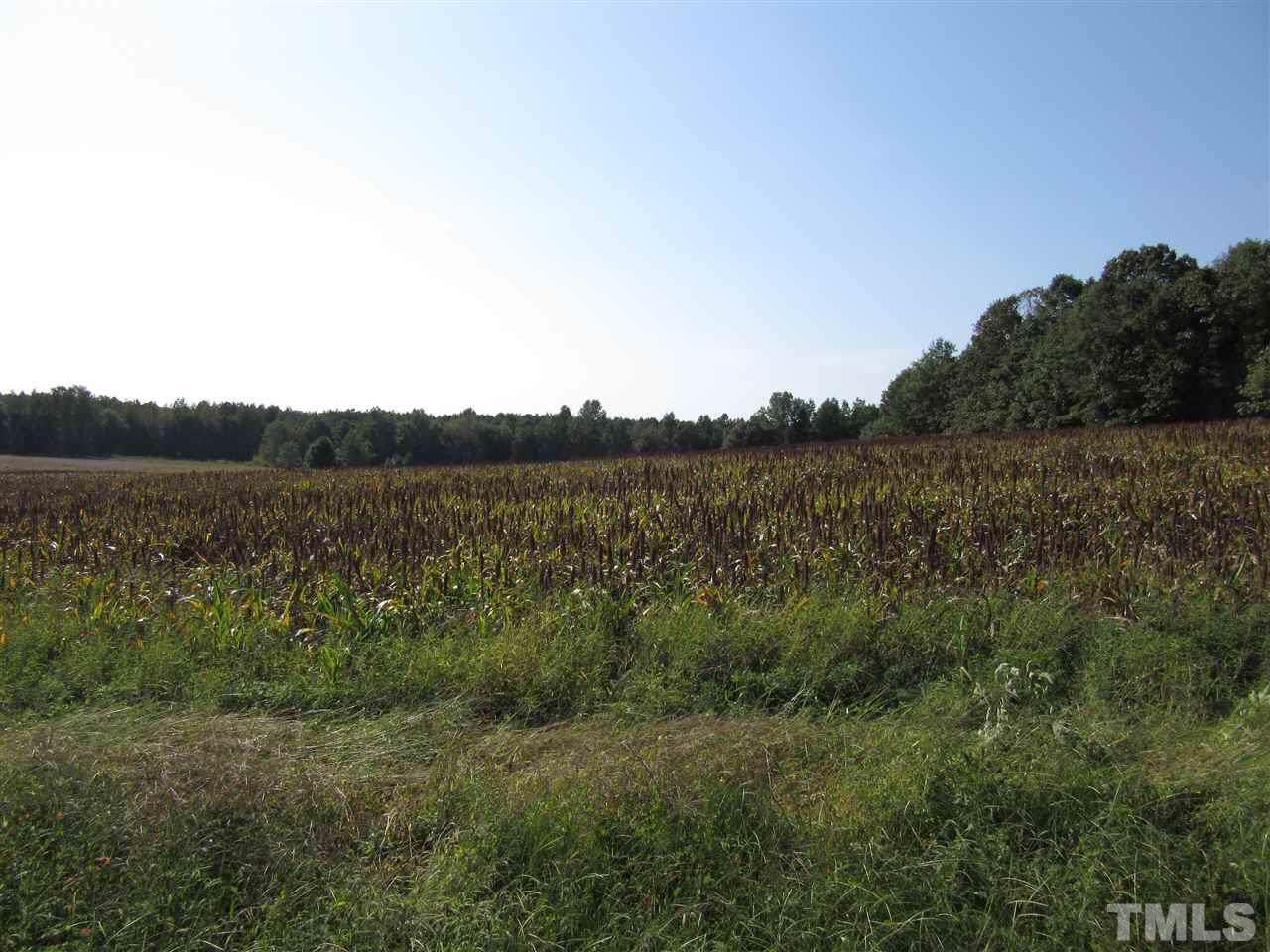 7.1 Acres Nc 96 Highway - Photo 1