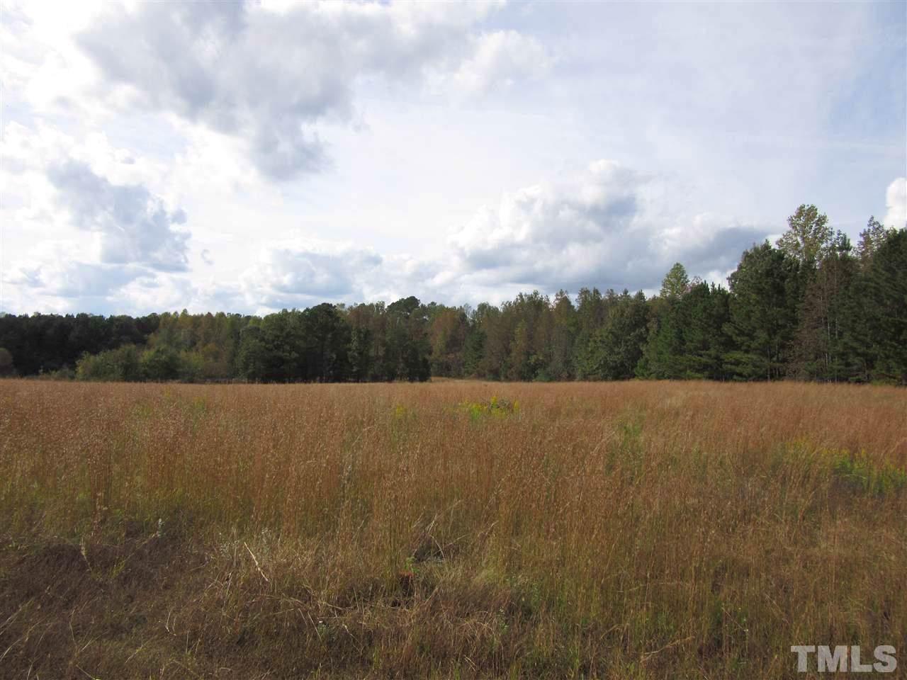 40.23 Acres Old Us 264 Highway - Photo 1