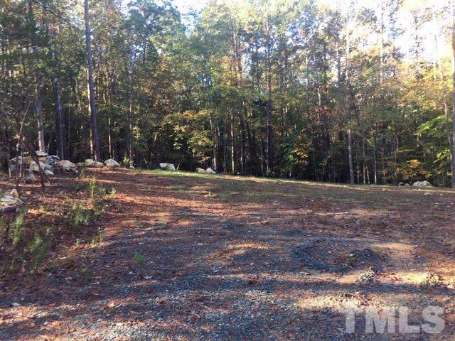 209 Wild Turkey Trail, Chapel Hill, NC 27516 (#2287014) :: RE/MAX Real Estate Service