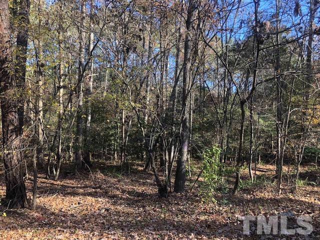 272 Mill Creek Road, Moncure, NC 27559 (#2290659) :: Marti Hampton Team - Re/Max One Realty