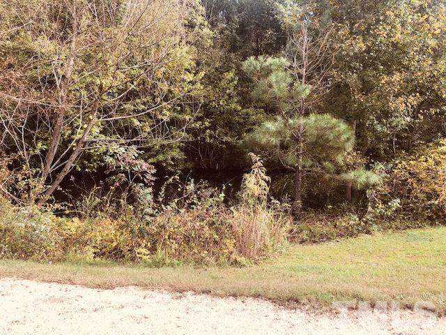 0 W Jackson Boulevard, Erwin, NC 28339 (#2304483) :: Dogwood Properties