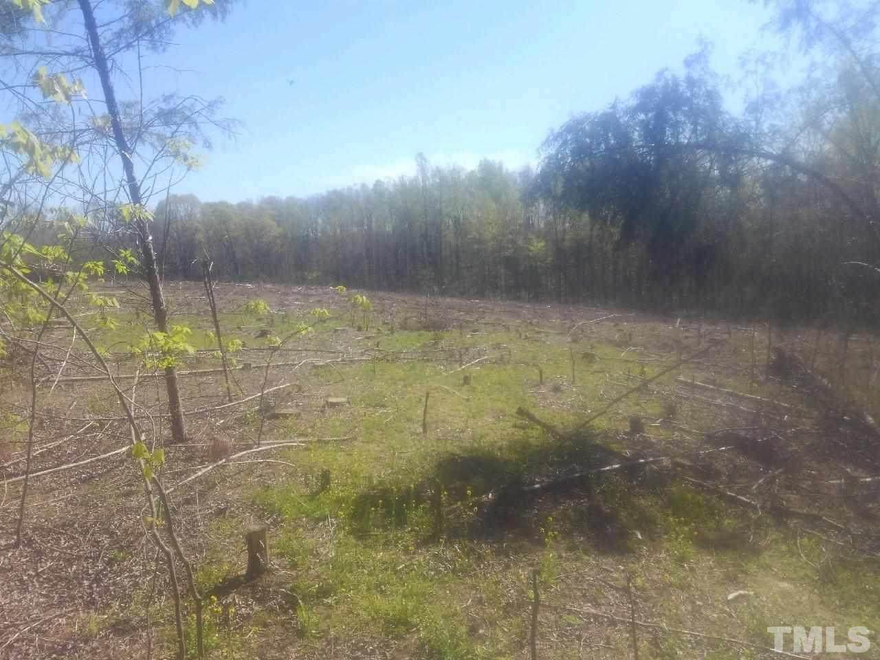 Tract 1 Clapp Mill Road - Photo 1