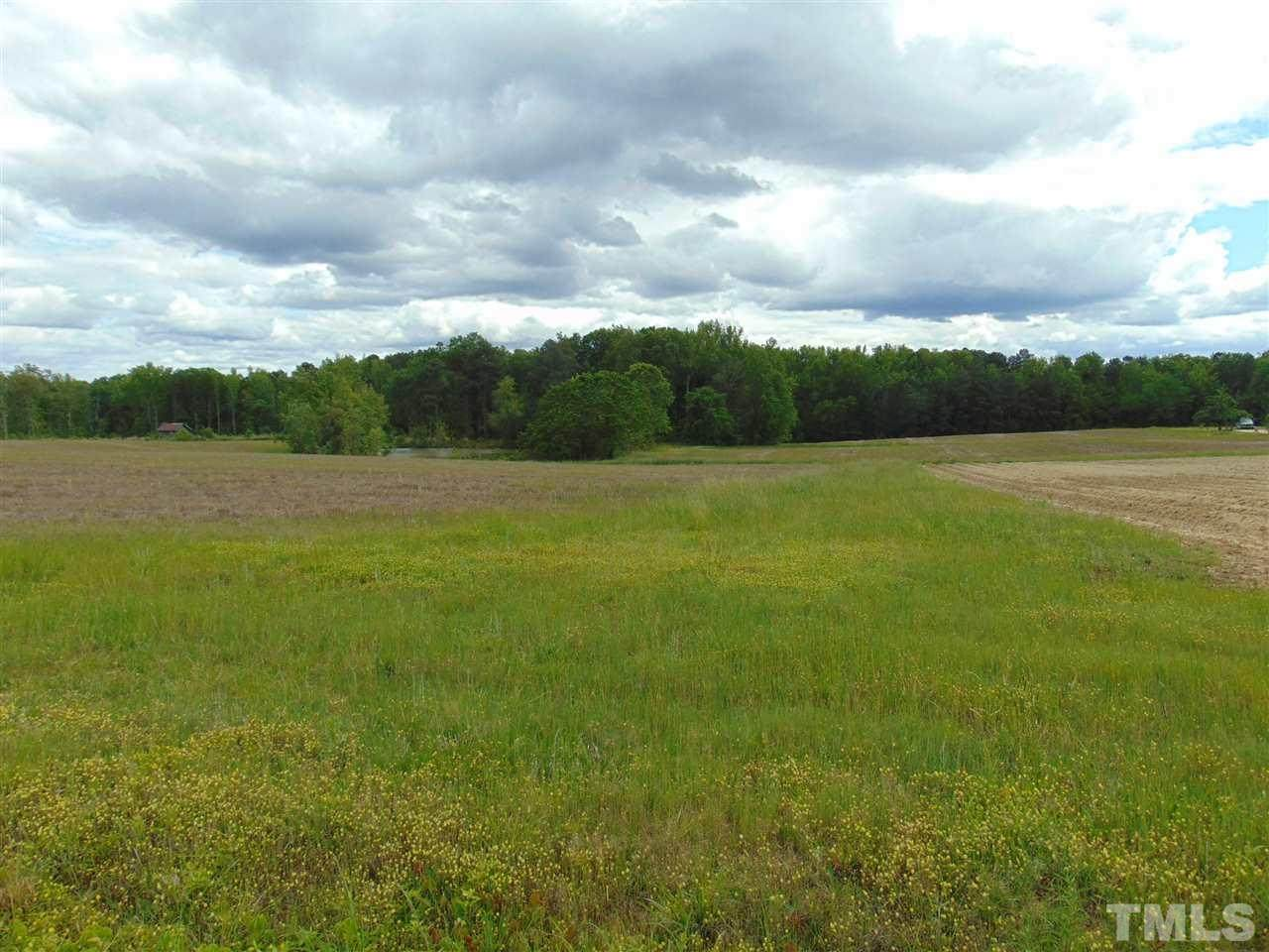 000 Epps Fork Road - Photo 1