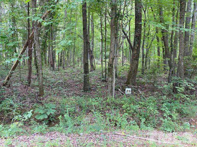 Lot 25A Laurel Ridge Drive, Snow Camp, NC 27349 (#2335936) :: Bright Ideas Realty
