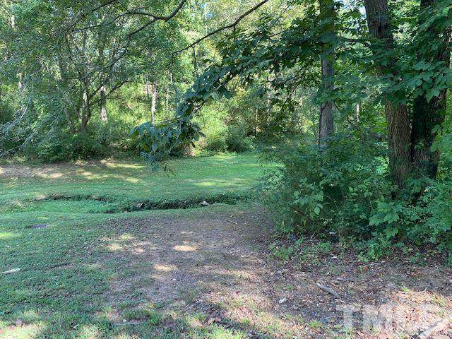 0 Salisbury, Ramseur, NC 27316 (#2343207) :: Raleigh Cary Realty