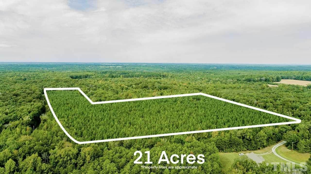 21 acres Ridgeville Road - Photo 1