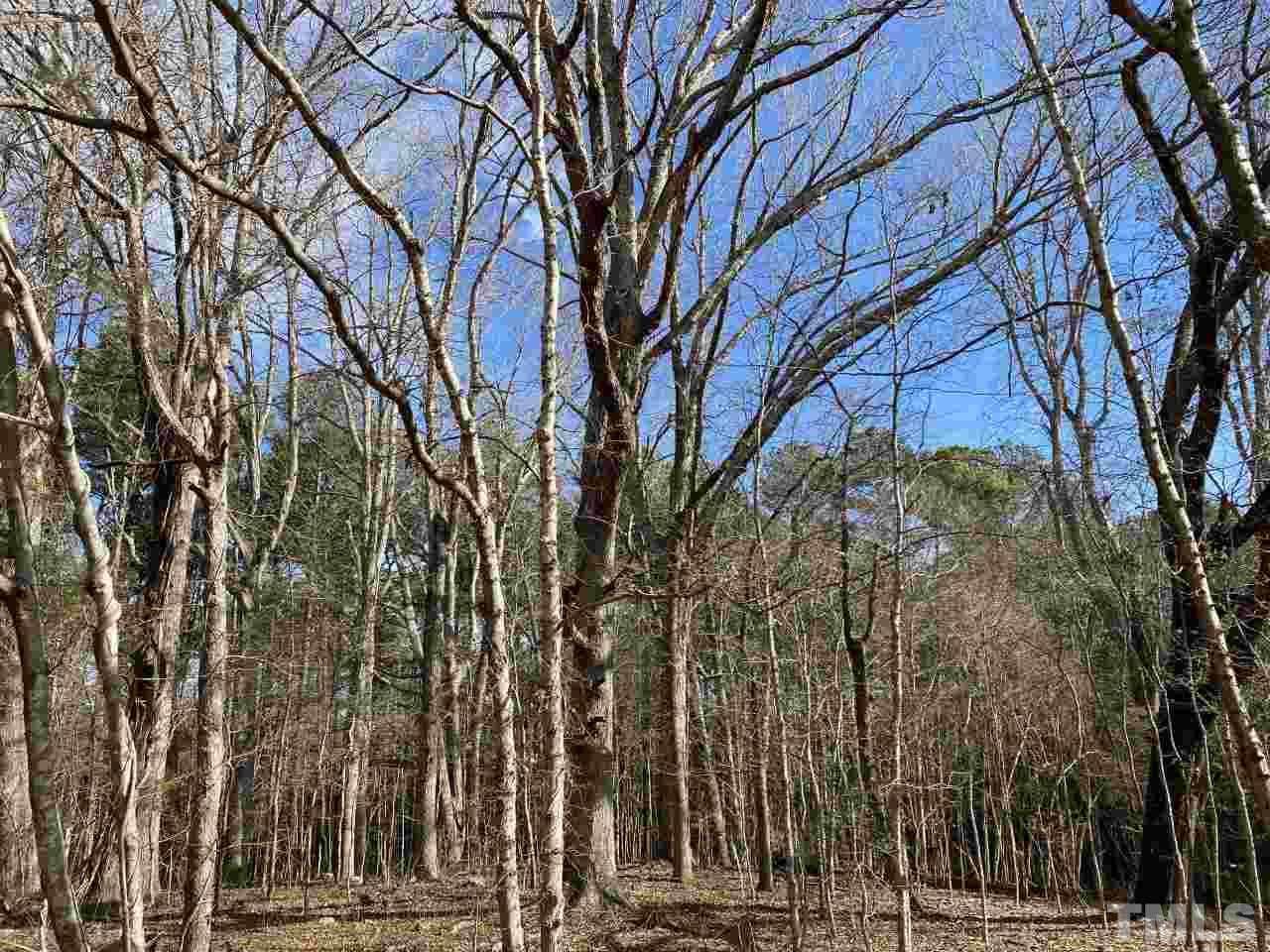 Carolina Forest Road - Photo 1