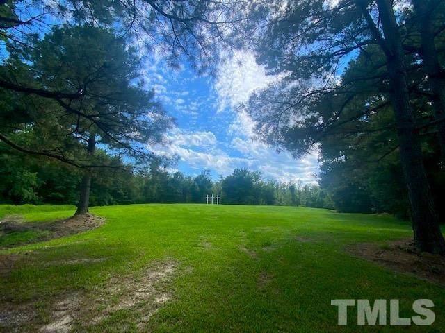 310 Woodall Farm Lane, Princeton, NC 27569 (#2390542) :: Marti Hampton Team brokered by eXp Realty