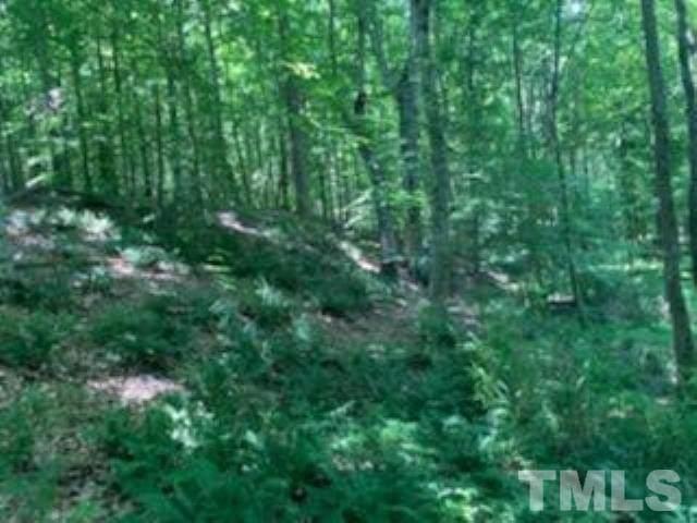 303 Wyndfall Lane, Archer Lodge, NC 27527 (MLS #2395408) :: EXIT Realty Preferred
