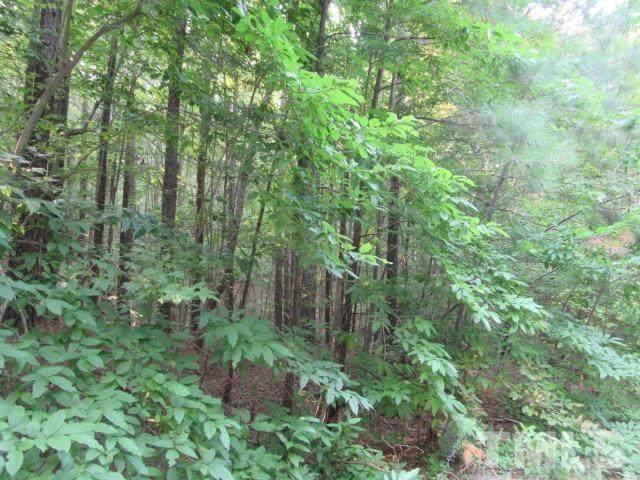 Lot 30 Dabney Woods Lane, Henderson, NC 27537 (#2407679) :: Dogwood Properties