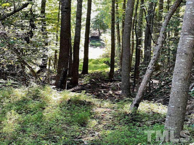 0 Lanier Farm Road, Sanford, NC 27330 (#2413415) :: Triangle Top Choice Realty, LLC