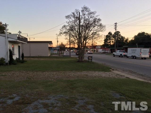 166 Raleigh Street, Angier, NC 27501 (#2156736) :: The Abshure Realty Group