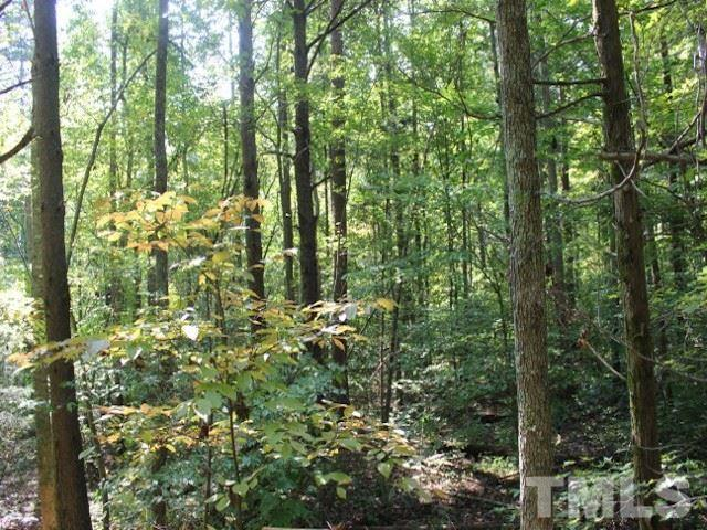 Lot 6 Preservation Forest Lane, Efland, NC 27243 (#2235835) :: The Jim Allen Group