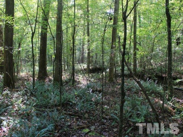 Lot 1 Preservation Forest Lane, Efland, NC 27243 (#2236289) :: The Jim Allen Group