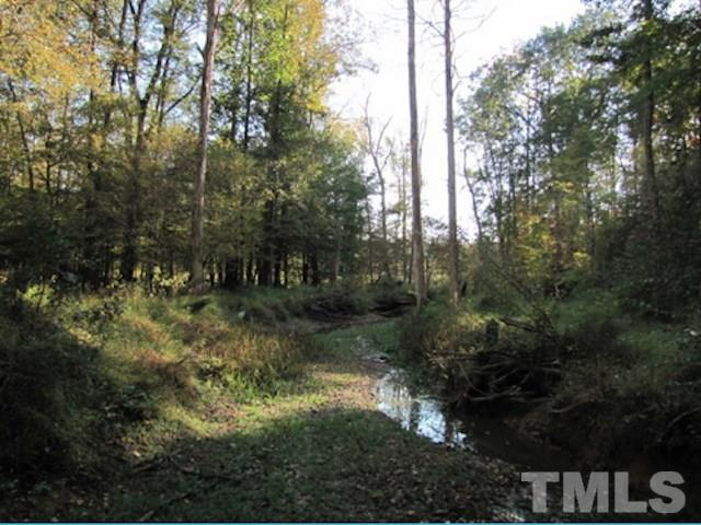 Lot 8 Preservation Forest Lane, Efland, NC 27243 (#2236297) :: The Jim Allen Group
