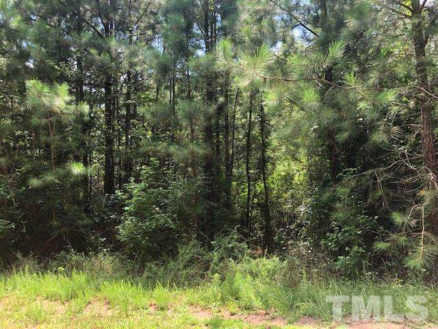 Lot 21 Round Fish Drive, Sanford, NC 27330 (#2335362) :: Saye Triangle Realty