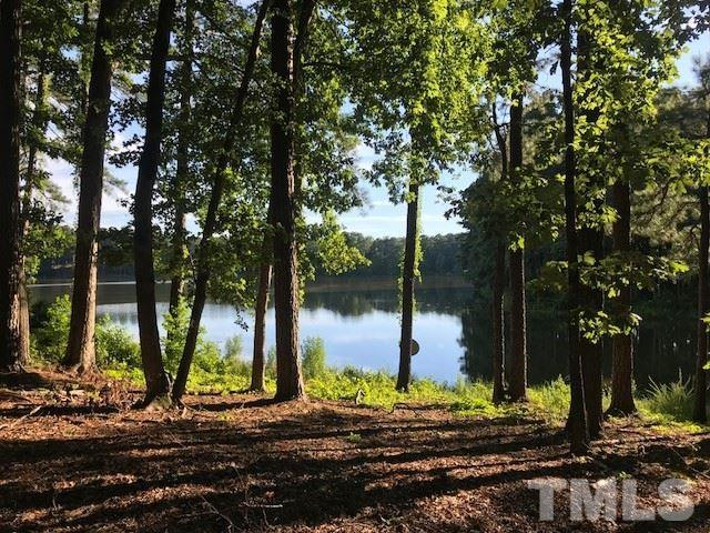 2710 Dunhaven Court, Garner, NC 27529 (#2200797) :: The Perry Group