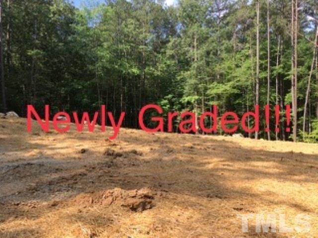 209 Wild Turkey Trail, Chapel Hill, NC 27516 (#2215620) :: Morgan Womble Group