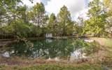 17766 River - Photo 28