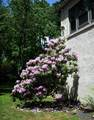 3446 Chestnut Hill - Photo 43