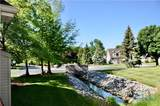 1501 Plum Creek Drive - Photo 2