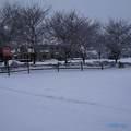 8660 Quail Hollow Court - Photo 23