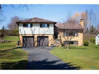 392 S River, Waterville, OH 43566 (MLS #6005434) :: RE/MAX Masters