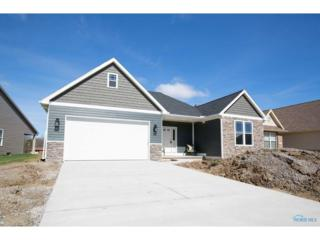 9924 Studer, Whitehouse, OH 43571 (MLS #6006309) :: RE/MAX Masters