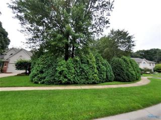8469 Willow Glen, Holland, OH 43528 (MLS #6006854) :: RE/MAX Masters