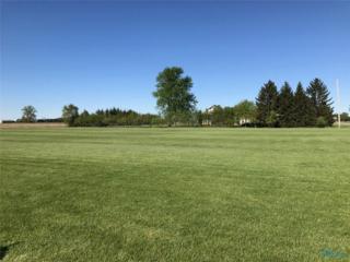 13011 Frankfort, Swanton, OH 43558 (MLS #6007633) :: Key Realty