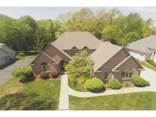 732 Lost Lakes, Holland, OH 43528 (MLS #6007888) :: RE/MAX Masters