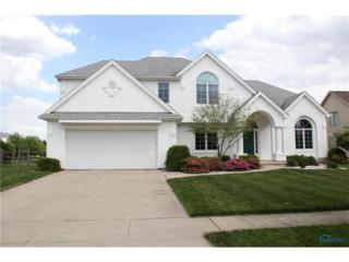 8911 White Eagle East, Sylvania, OH 43560 (MLS #6007928) :: RE/MAX Masters