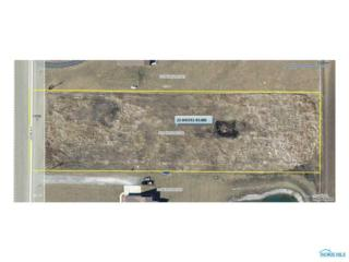 13590 Co Road 8-2, Delta, OH 43515 (MLS #6008119) :: Key Realty