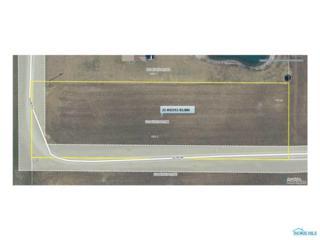 13520 Co Road 8-2, Delta, OH 43515 (MLS #6008122) :: Key Realty