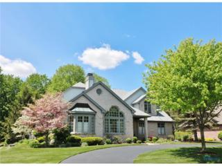 742 Lost Lakes, Holland, OH 43528 (MLS #6008327) :: RE/MAX Masters