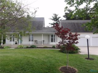 12347 Dowling, Bowling Green, OH 43402 (MLS #6008341) :: RE/MAX Masters