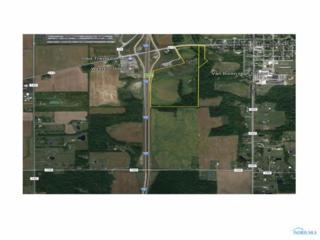 11755 State Route 613, Van Buren, OH 45889 (MLS #6008446) :: RE/MAX Masters