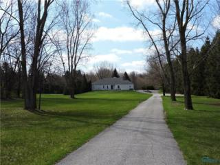 10255 Ramm, Whitehouse, OH 43571 (MLS #6005741) :: RE/MAX Masters