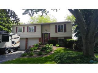 257 Mallard, Perrysburg, OH 43551 (MLS #6008337) :: RE/MAX Masters